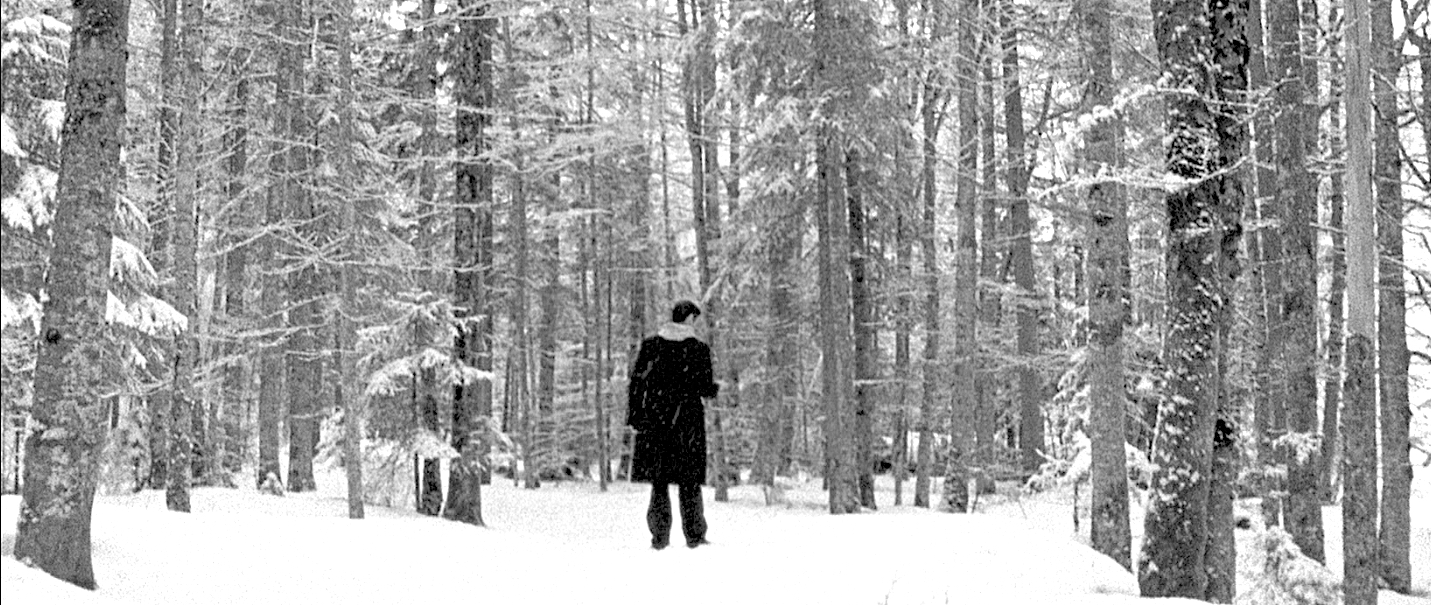 Into the Snow -
