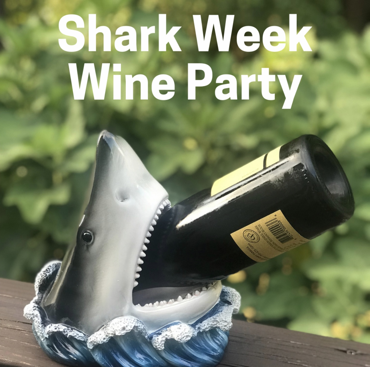 Shark Week Party 2019.jpeg