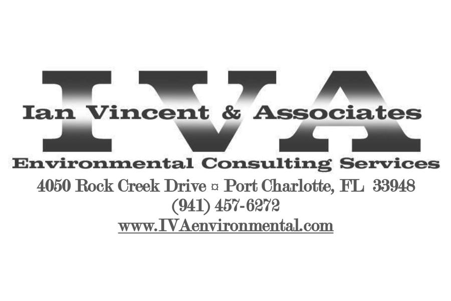 IVA logo for brochure.jpg