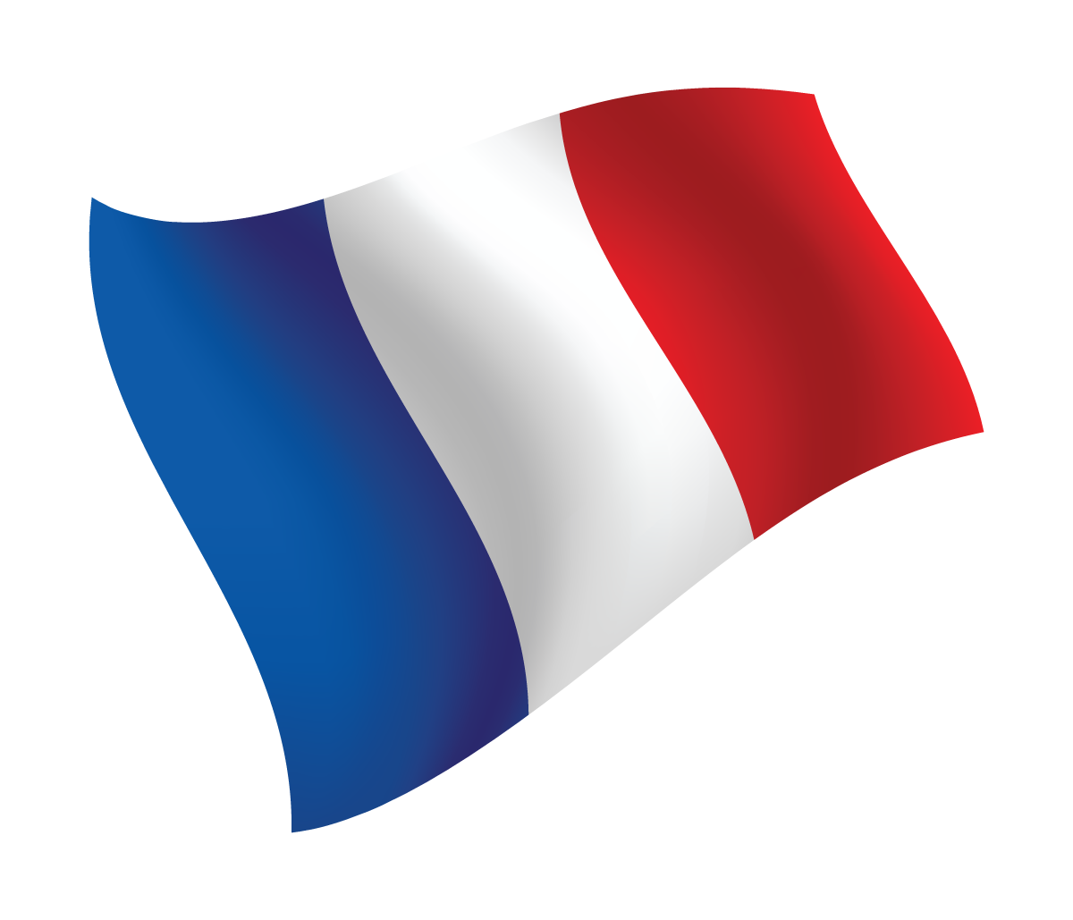 France Church  Planting Training  Offer scholarships and produce resources to train prospective French church planters.