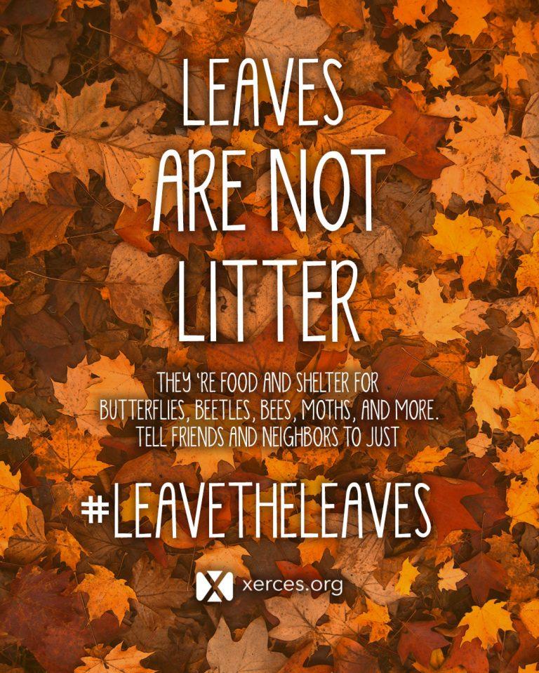 leavetheleavesxerces.jpg