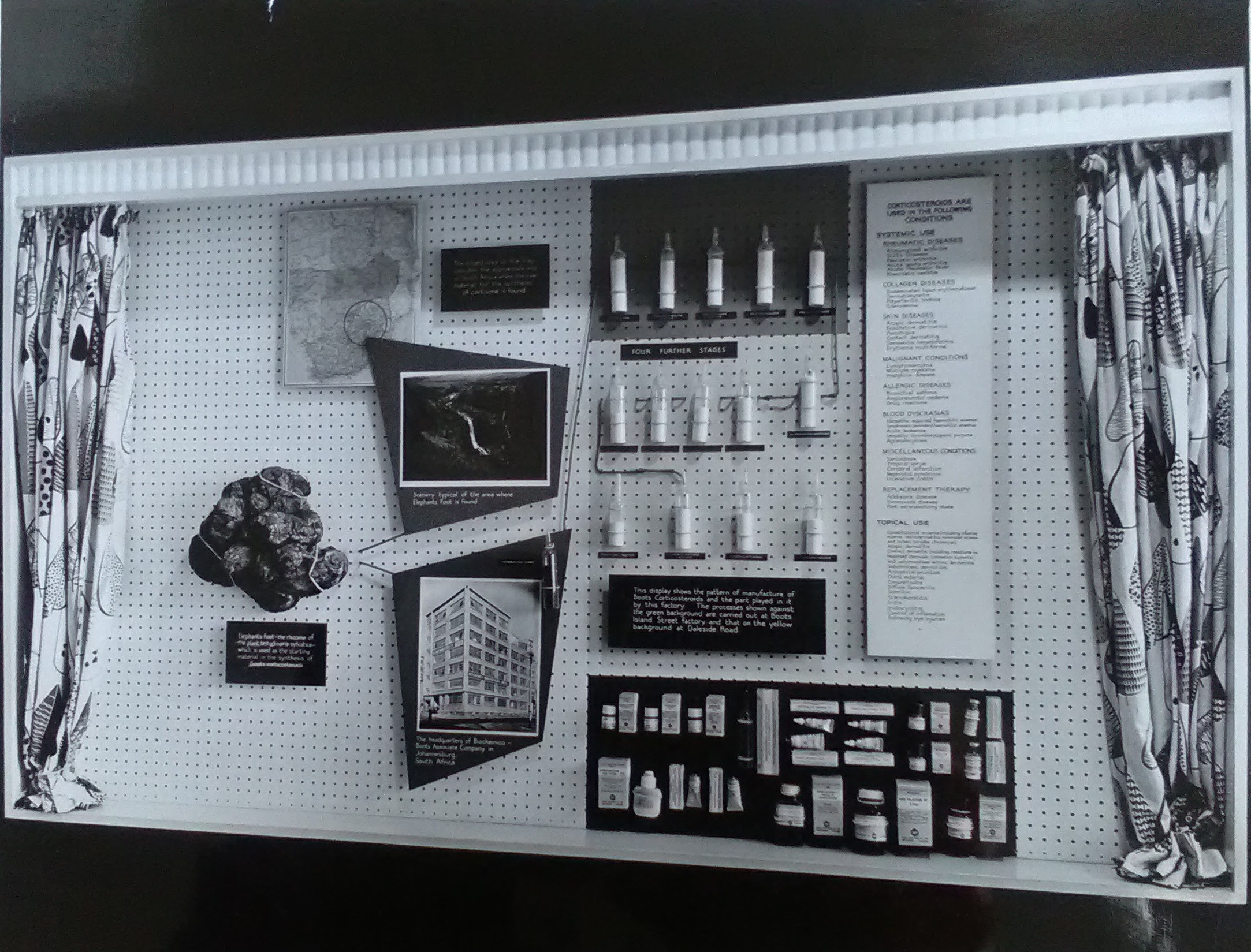 1950s display showing Elephants Foot yam, the Biochemico factory in Johannesburg, and stages of the chemical process to make Boots corticosteroid products. Boots Archive, Nottingham.