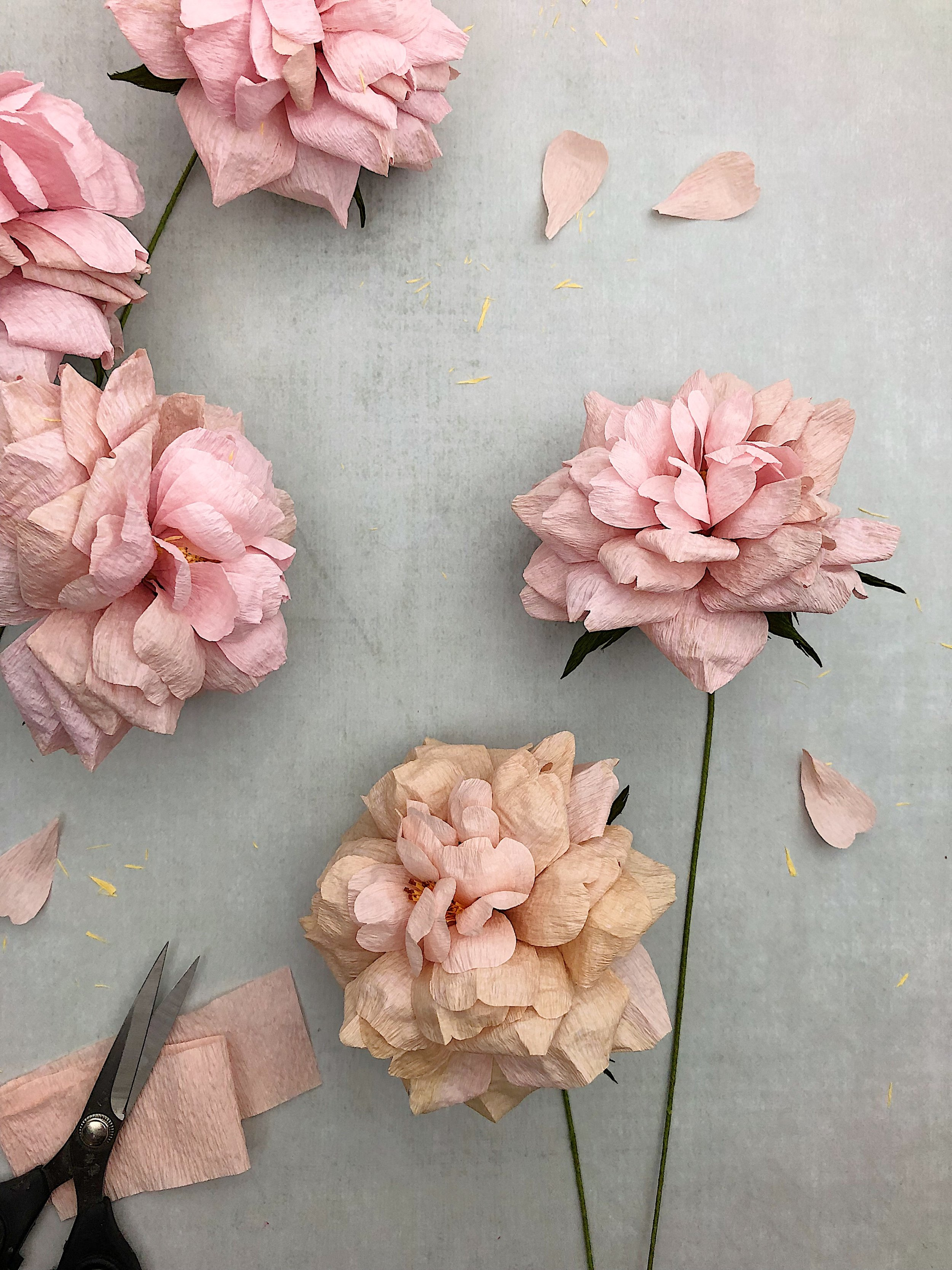 Crafted to bloom - crepe paper koko loko roses.JPG