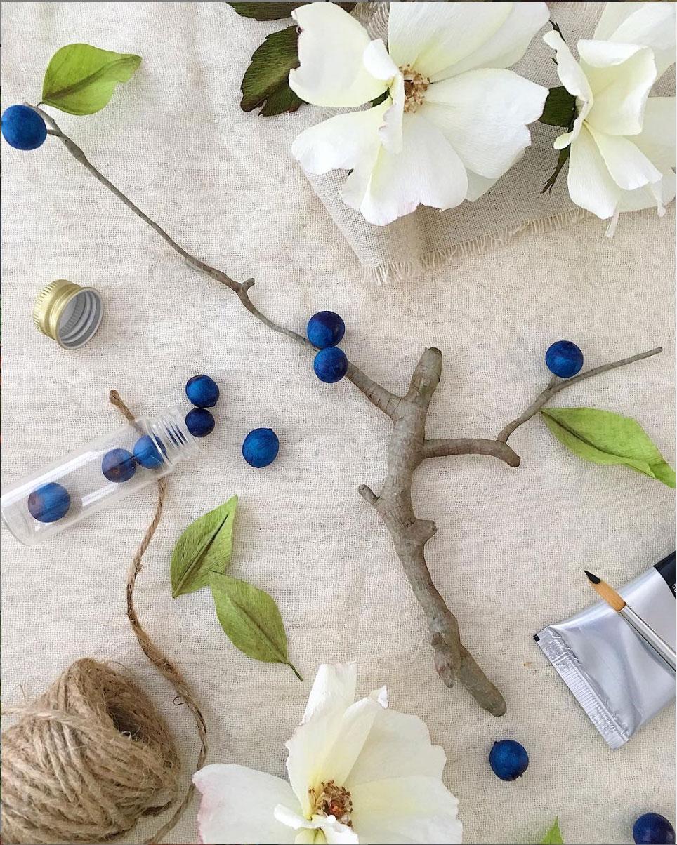 Blue-berry-branch.jpg