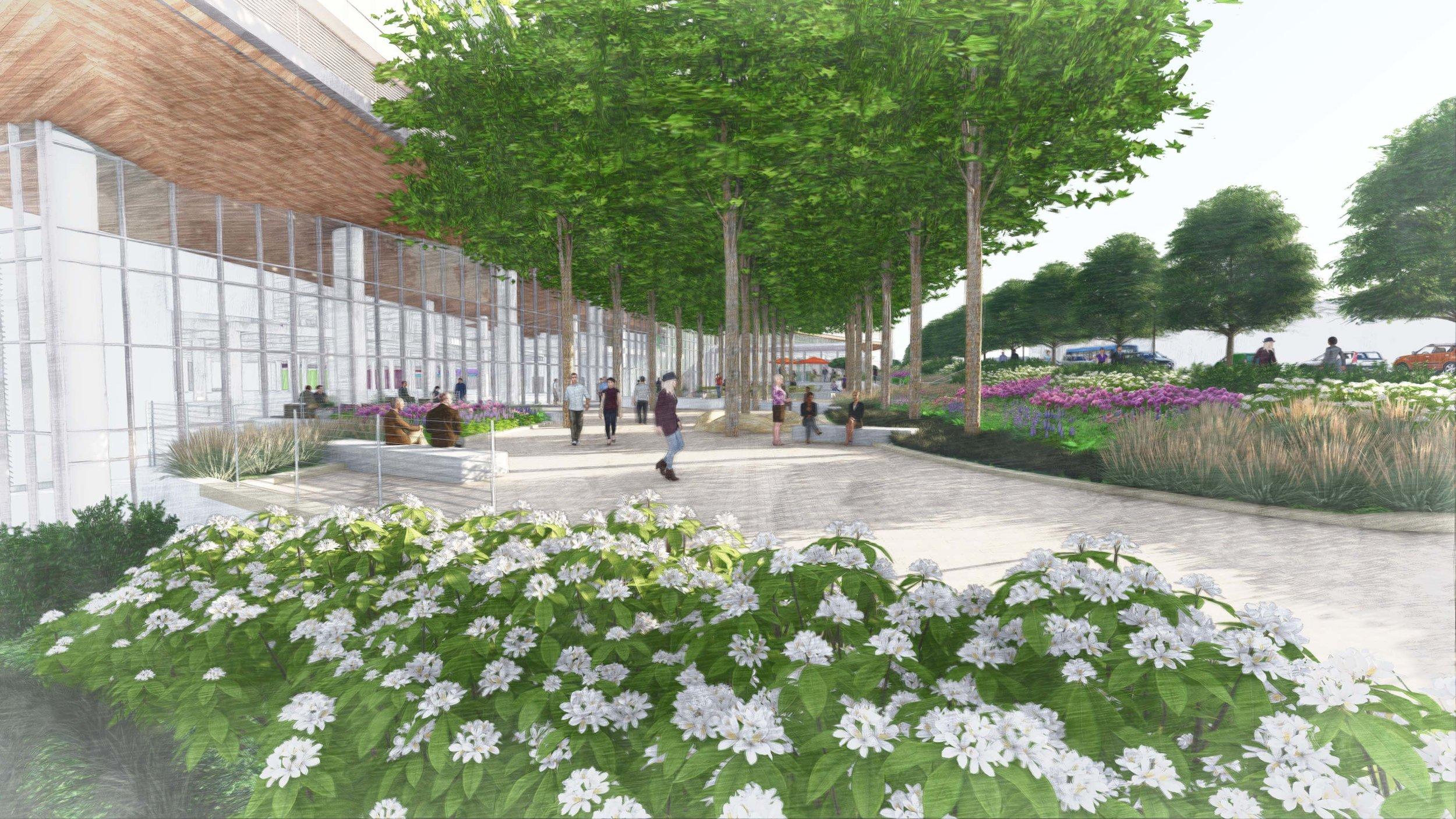 Piedmont Healthcare Atlanta - Enhance walkability and connection to the urban context