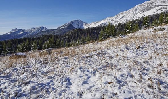 North_Ridge_Ranch-0048.jpg