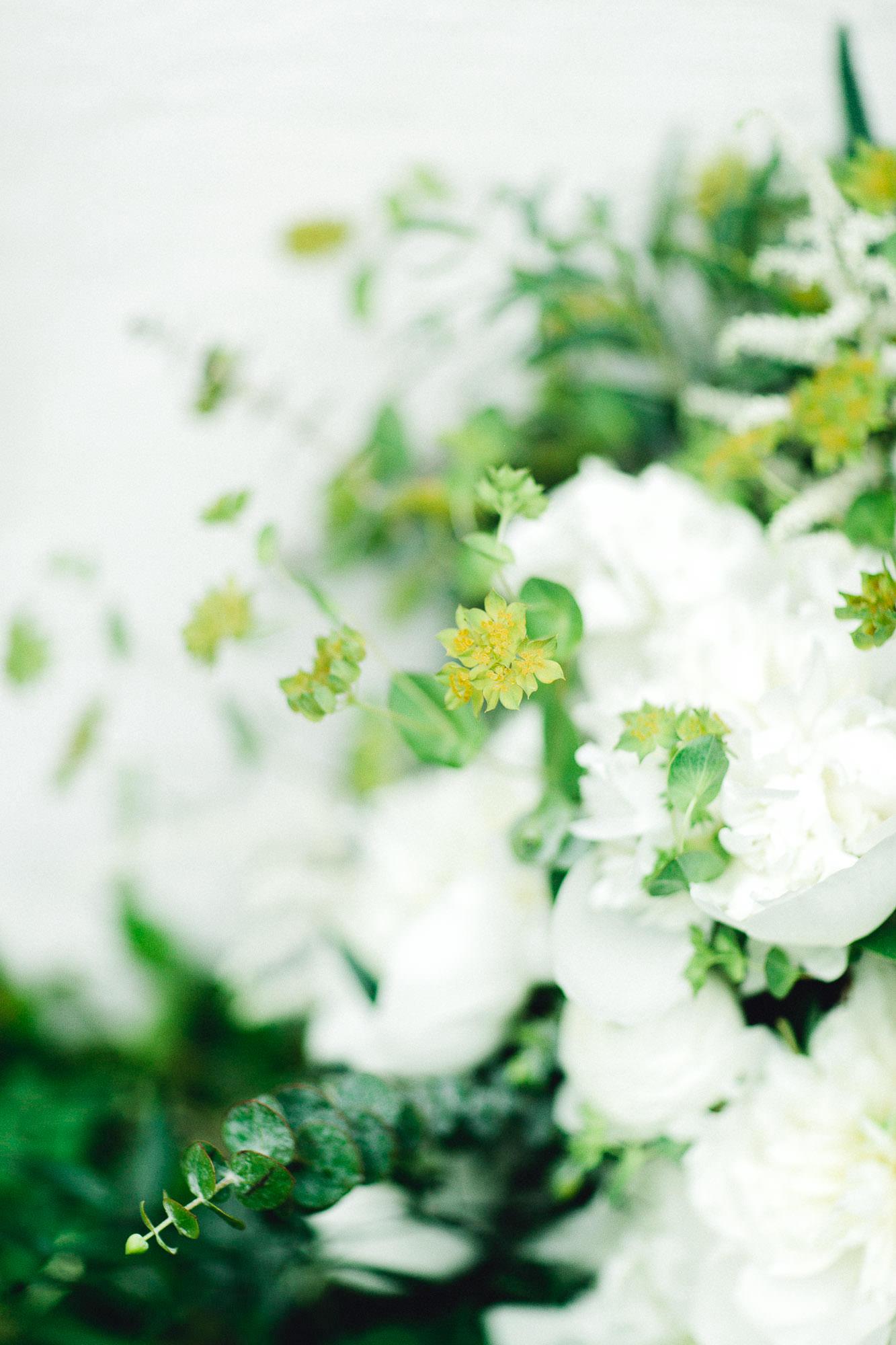 addie-michael-dallas-arboretum-weddings0065.jpg