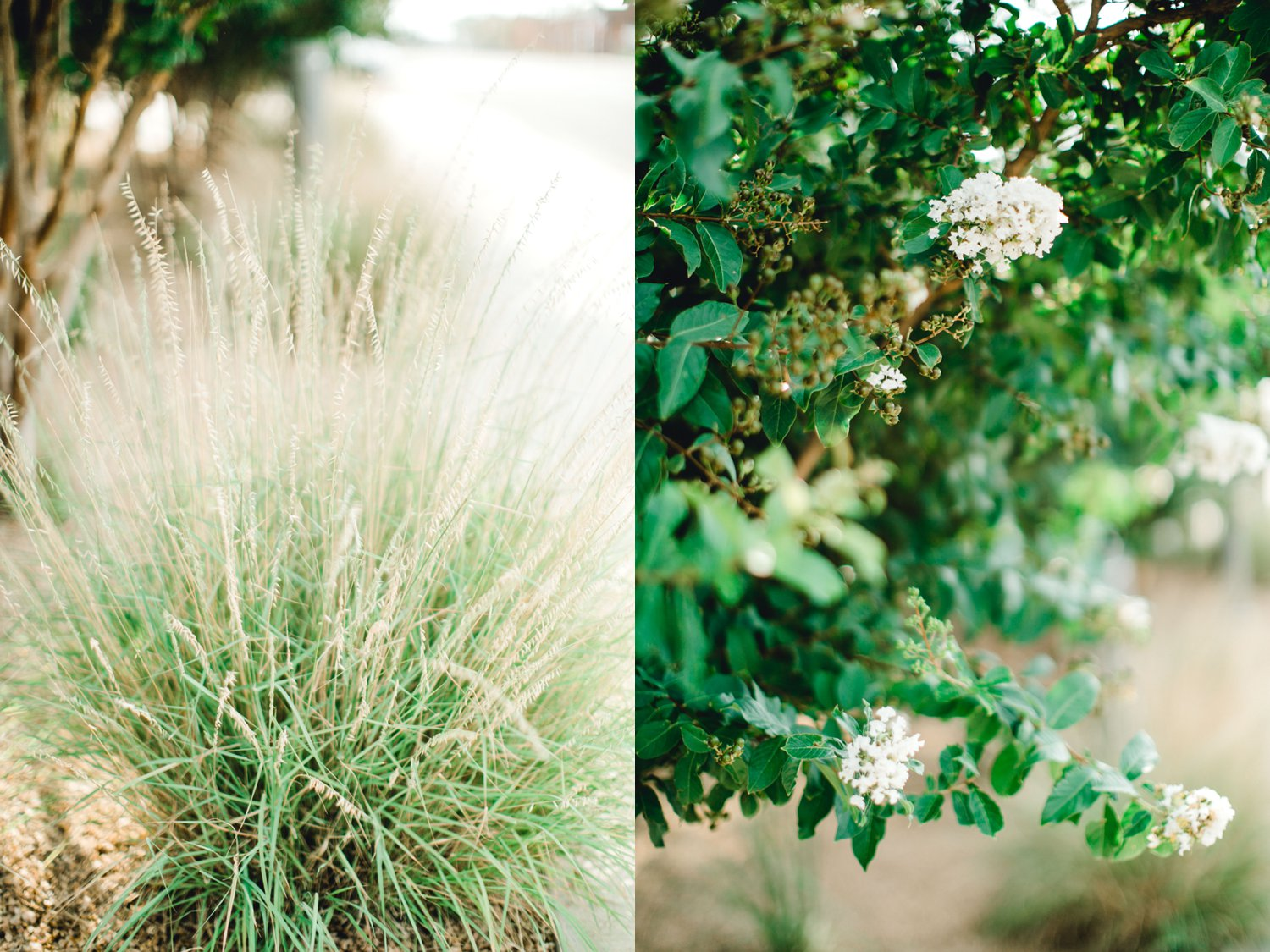Allison_and_Clay_Smart_Engagements_ALLEEJ_Lubbock_Photographer_0055.jpg