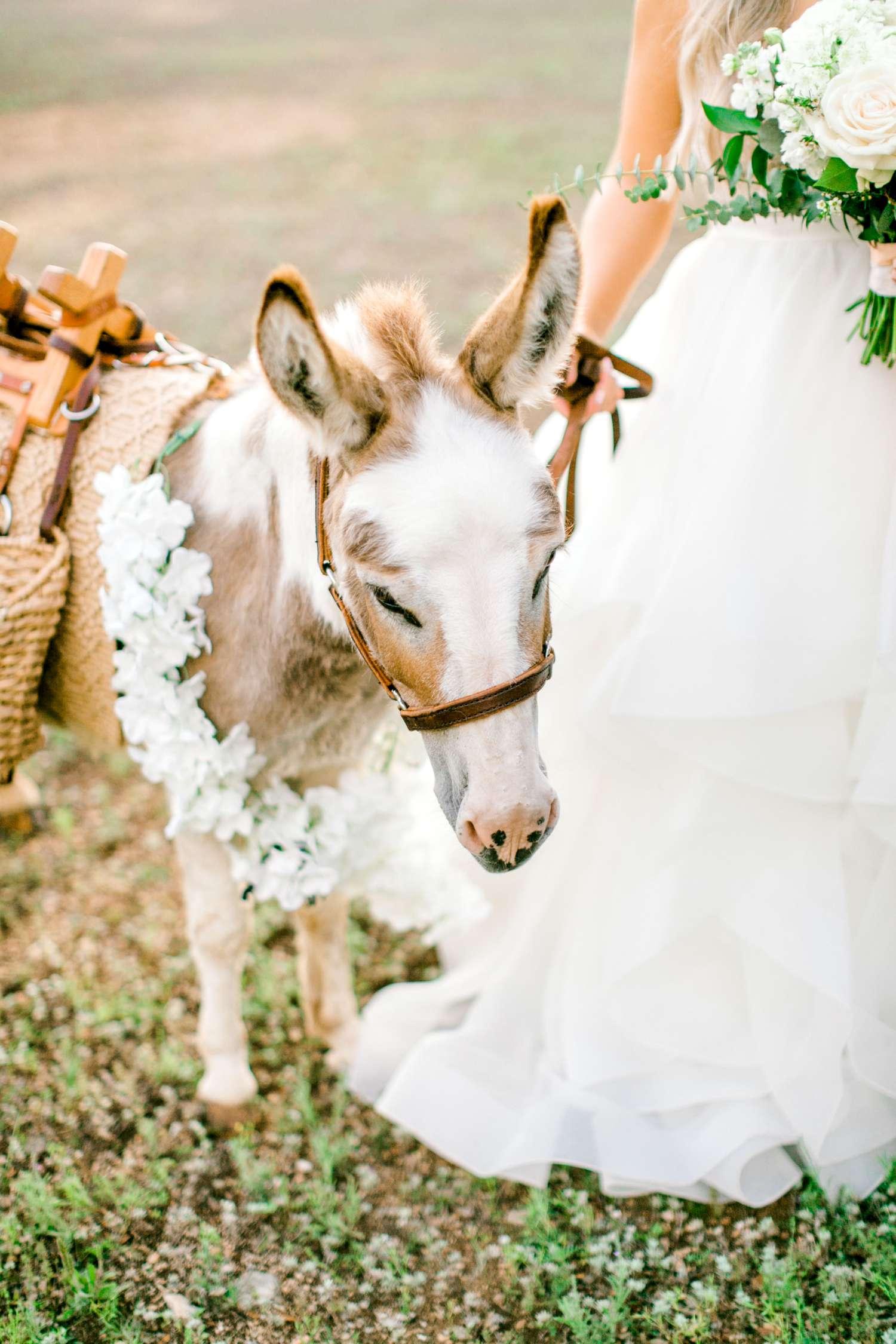 HAYLEE+JUSTIN+GREGORY+HERITAGE_HAUS_AUSTIN_TEXAS_WEDDING_0125.jpg