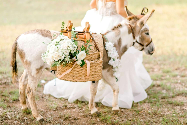 HAYLEE+JUSTIN+GREGORY+HERITAGE_HAUS_AUSTIN_TEXAS_WEDDING_0127.jpg