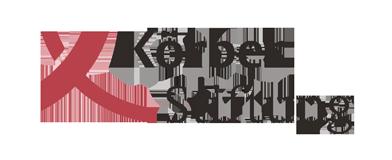 Koerber-Stiftung.png