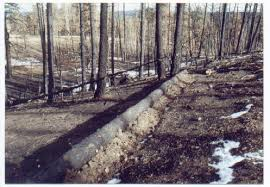 Contour Felling - Felling trees along a horizontal contour is an easy and effective way to keep excess water out of a main drainage. These structures encourage lateral water flow and capture water to contribute to the water table.
