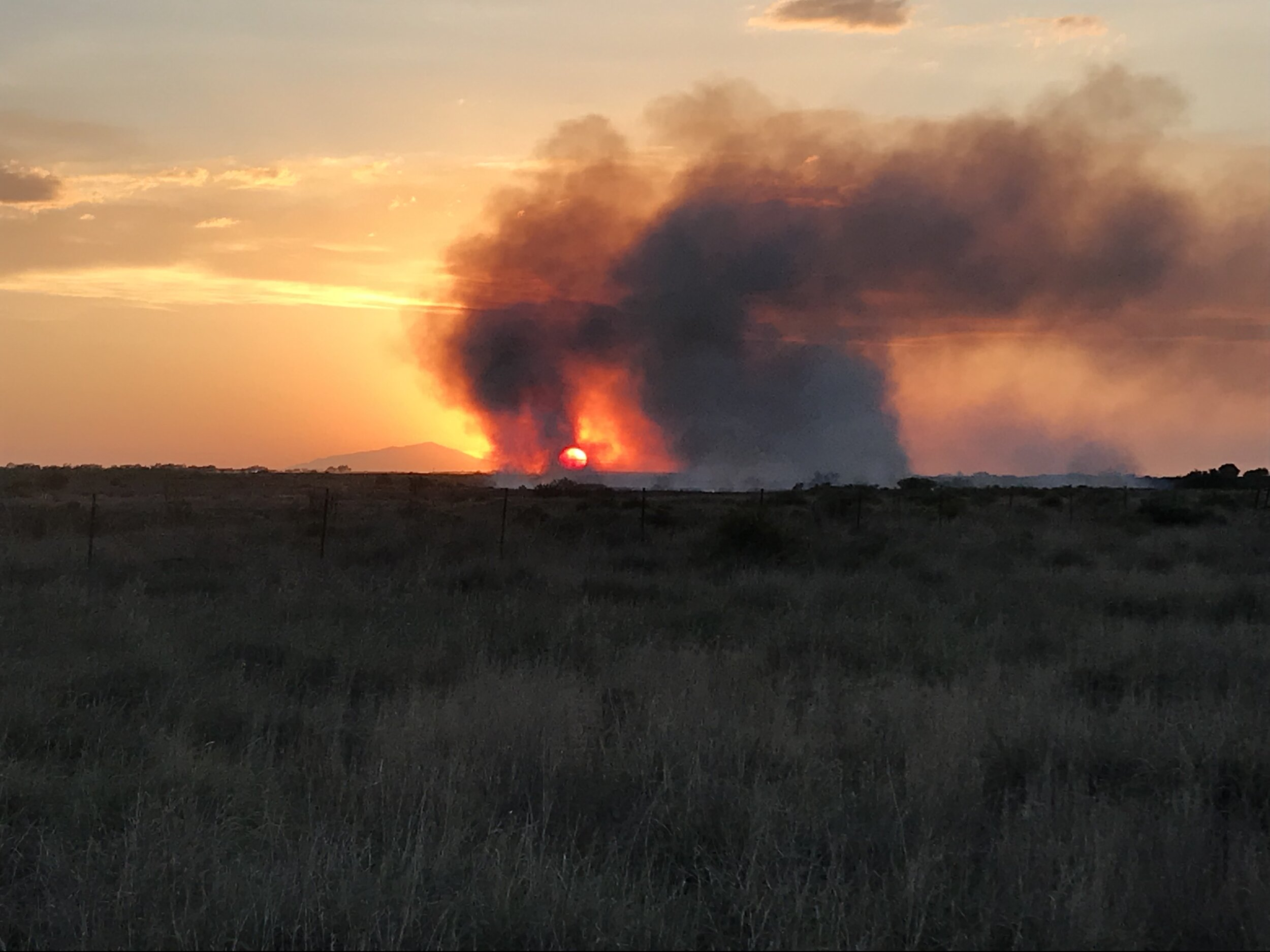The Patterson Fire burns along the Pecos River near Roswell, New Mexico on May 16, 2019. New Mexico State Parks photo by Joe Desjardins.