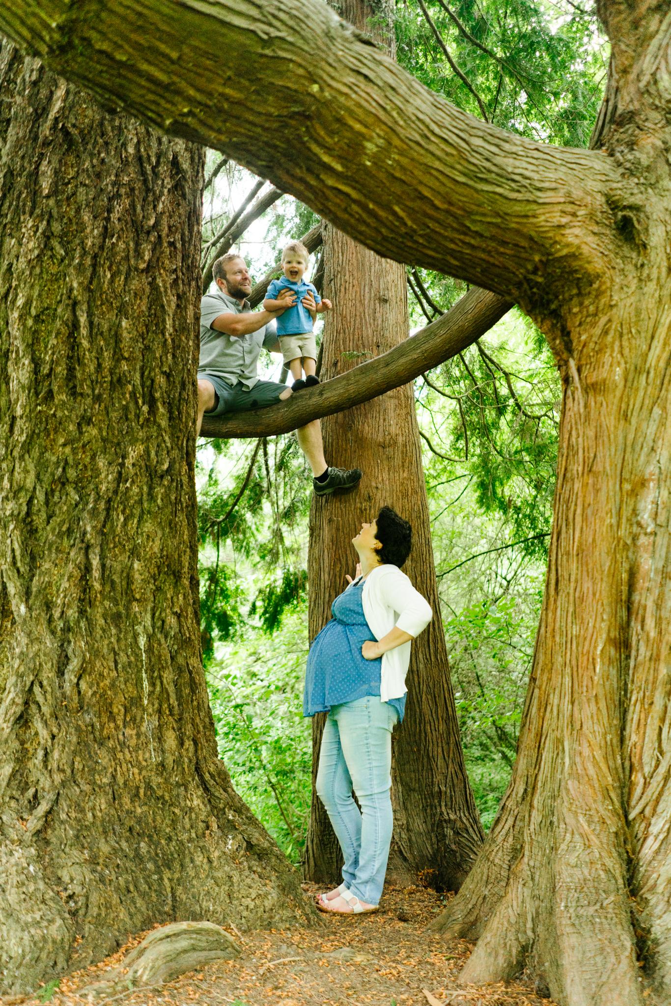 Kids Climbing Trees at Clark Lake Park in Kent, Washington