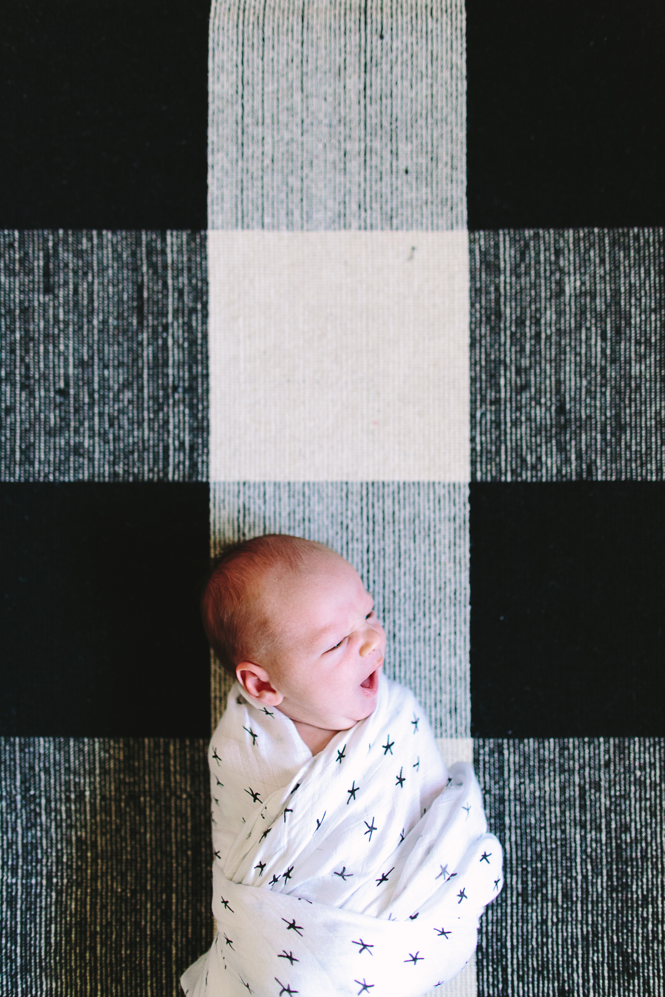 Best Newborn Photographers in Seattle