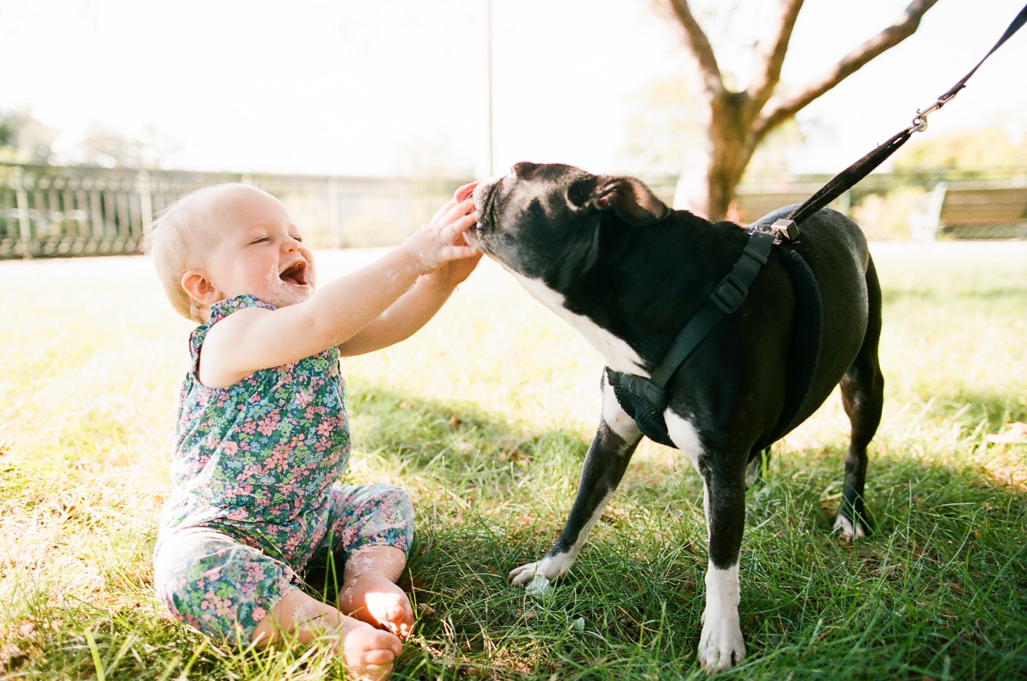 Bothell Pet Photographer