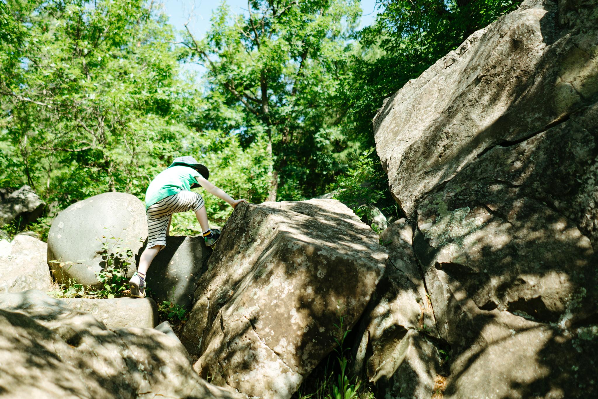 Seattle Children's Rock Climbing Photography