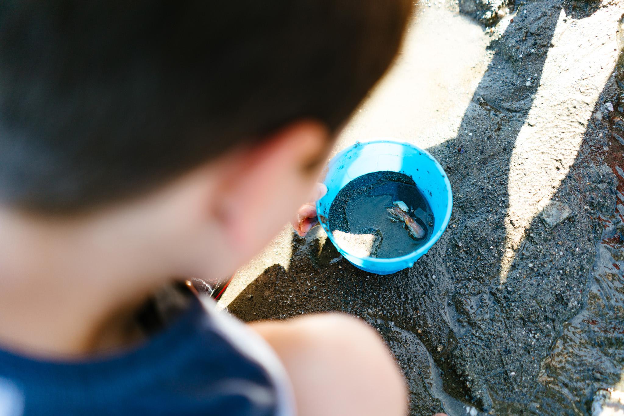 Best Beach Activities For Kids Near Seattle, Washington