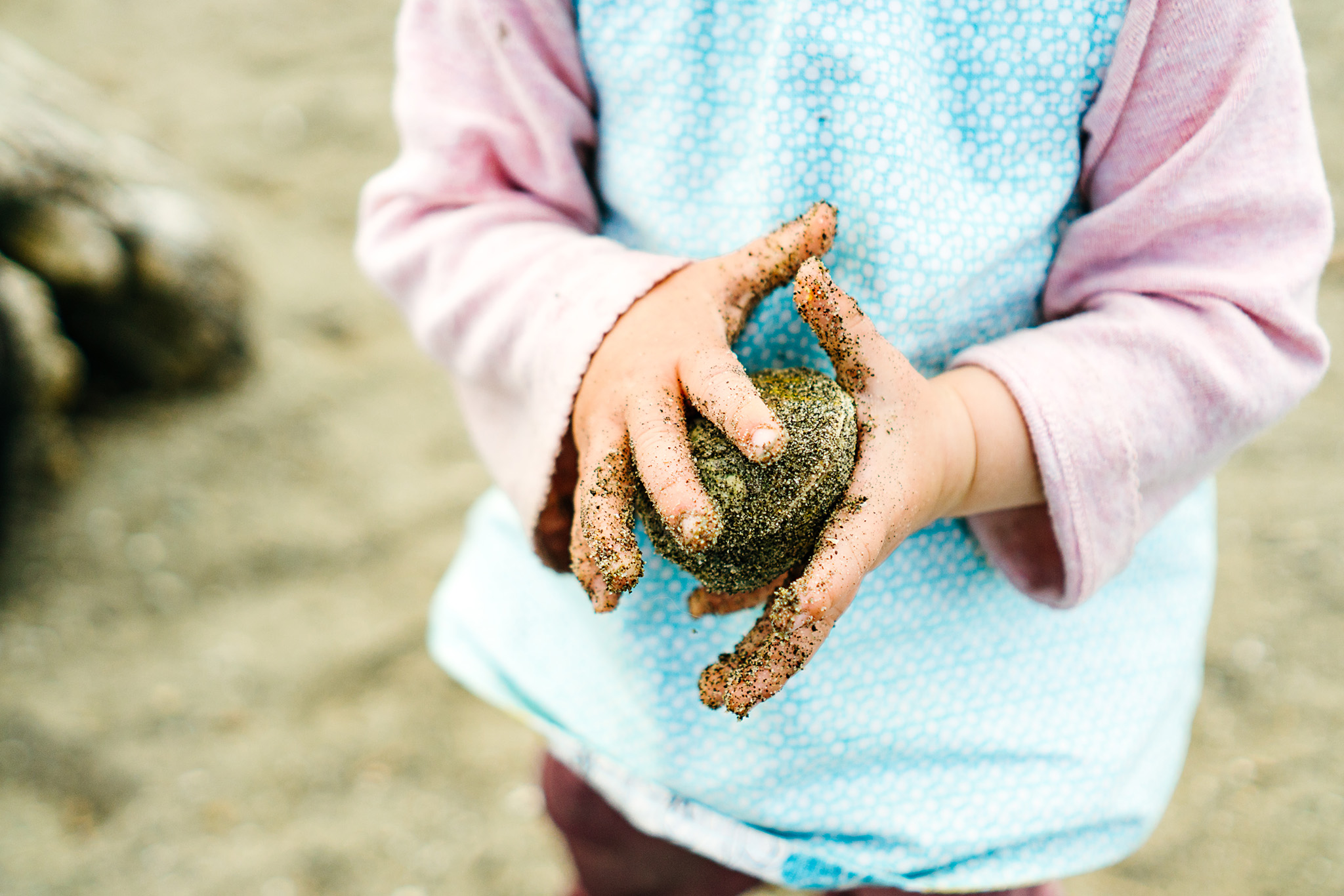Best Beach Activities for Kids in Seattle, Washington