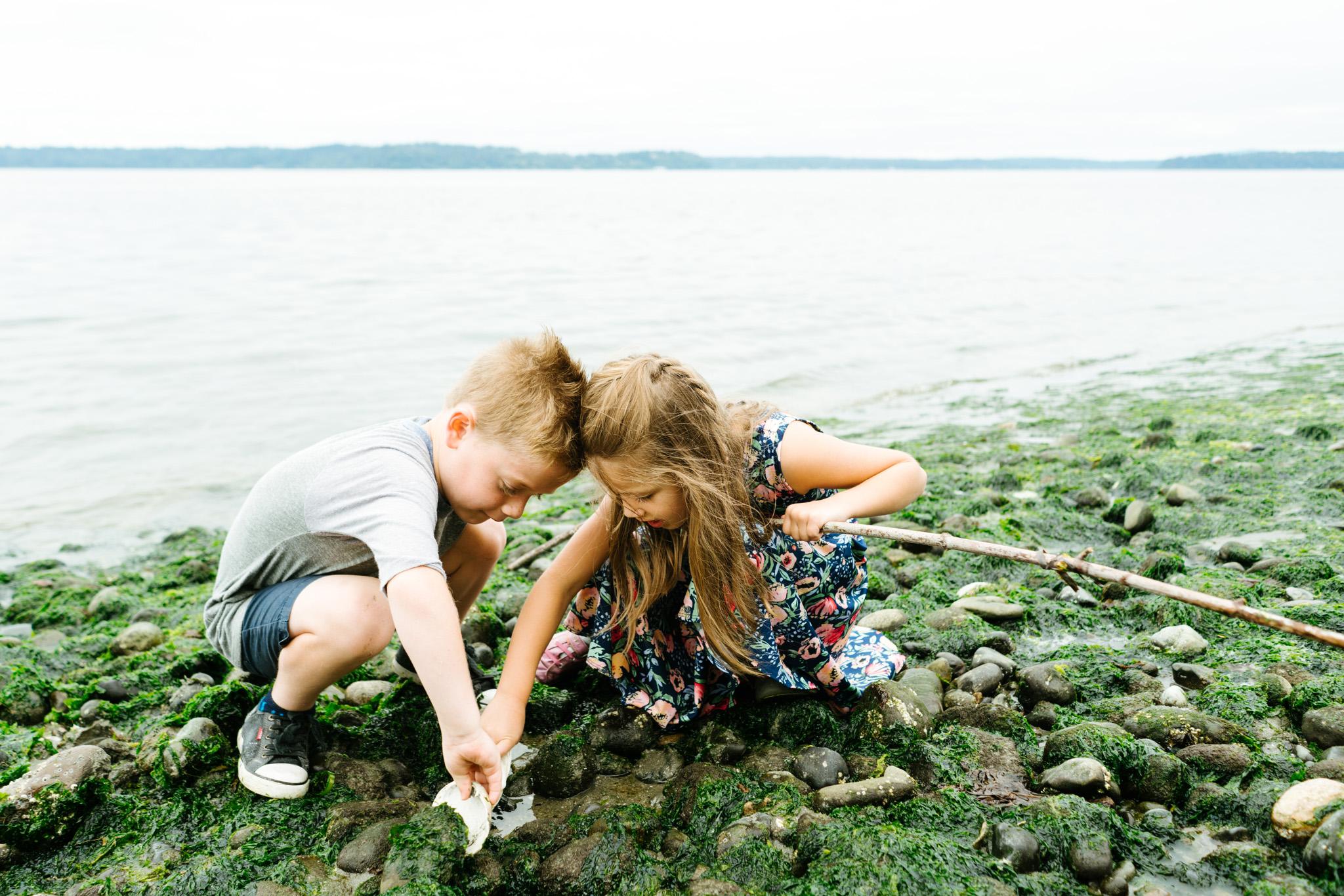 Best tide pools for kids near Seattle, Washington