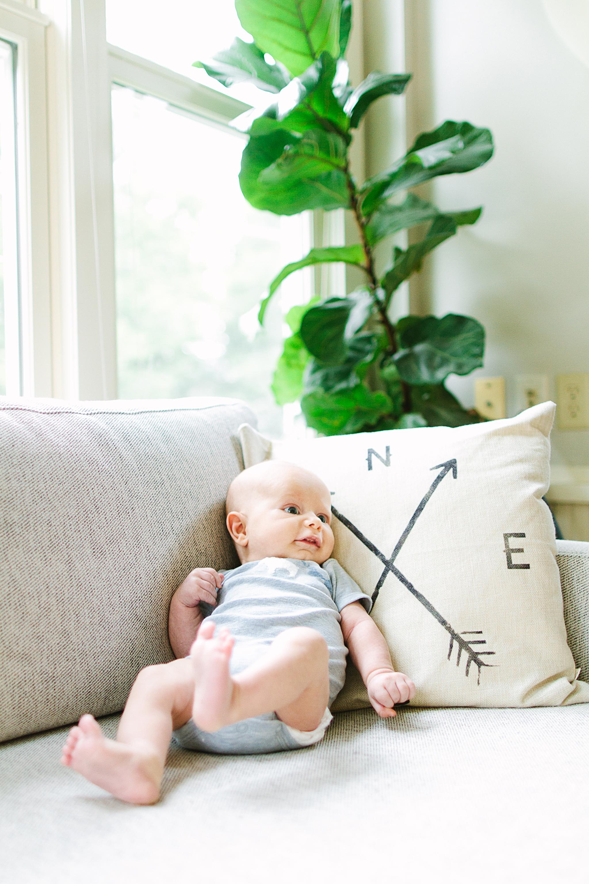 Olympia Newborn Photographer