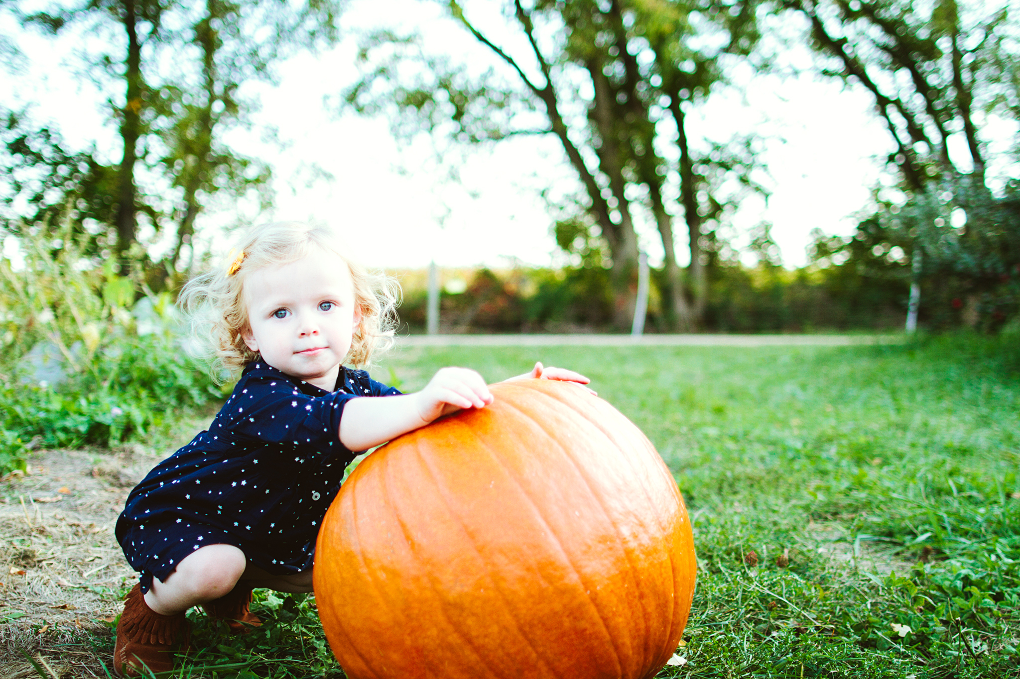 Seattle Family Photos in a Pumpkin Patch