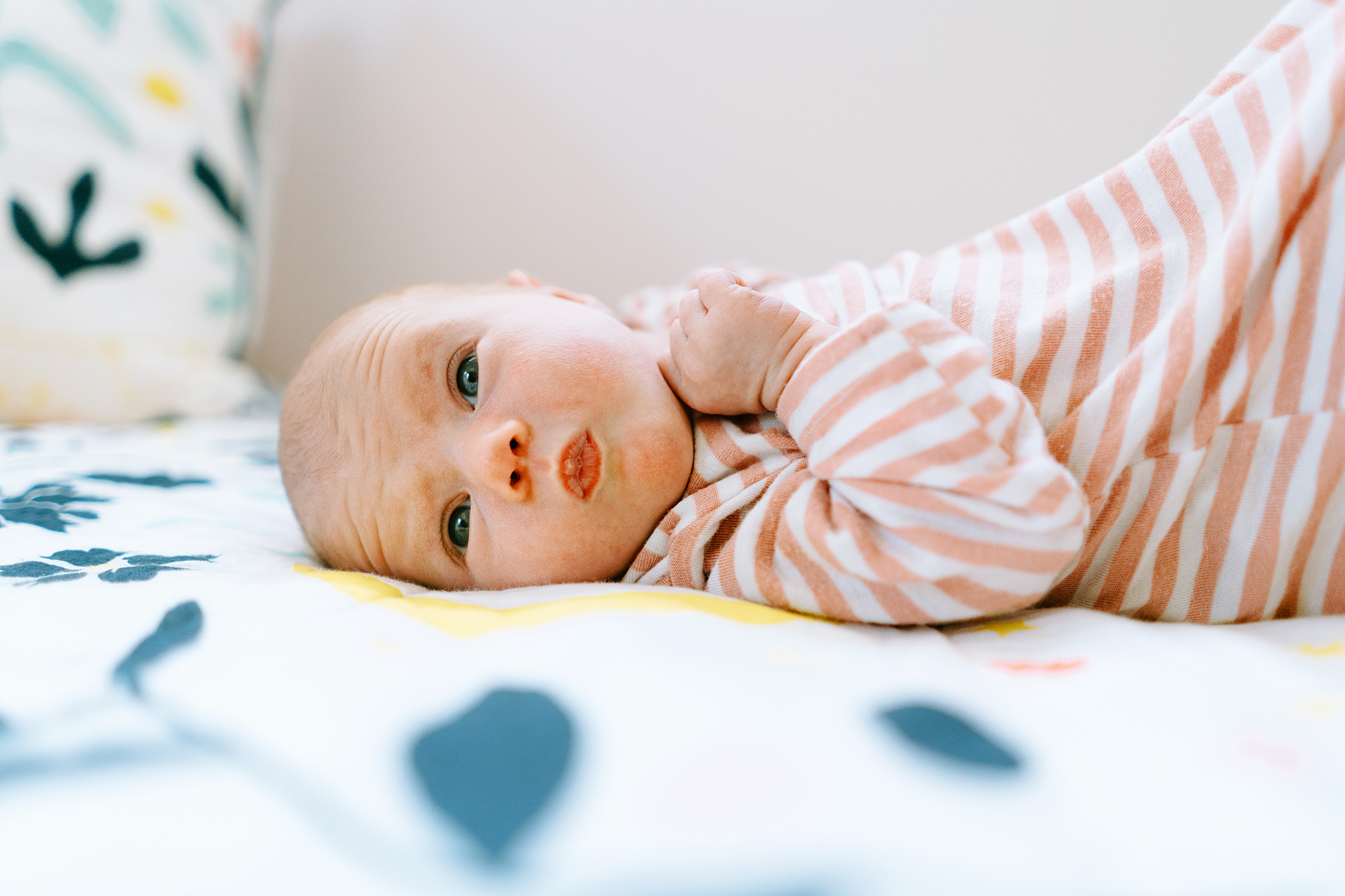 Best Seattle Baby Photographers