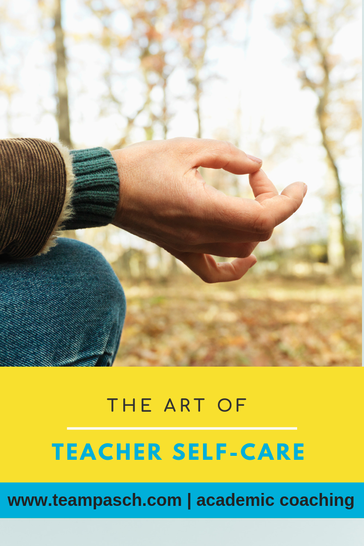 Teachers need to prevent burnout. To do this, it is important to practice self-care to remain a passionate teacher. We talk with the author of The Zen Teacher and Sanctuaries Dan Tricarico about education , how to practice self-care and following your calling.  Share this with any teacher you know!    #teacher #podcast  Marni Pasch Academic Coach Team Pasch Academic Coaching www.teampasch.com
