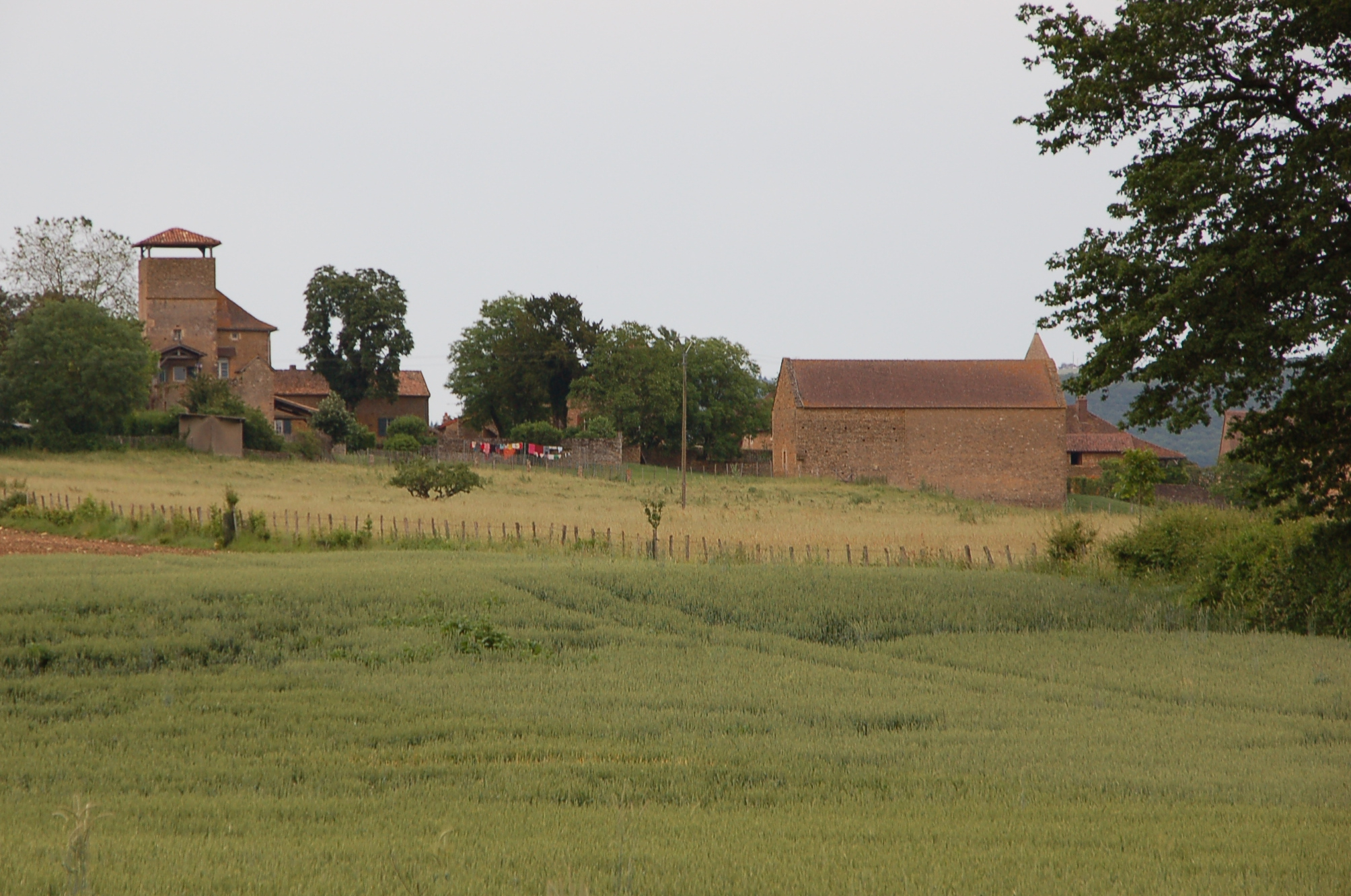 This is what the entire neighborhood of Taize looked liked. I spent much of my summer walking along these pastures and eating lots of cheese. It was a nice change of pace from my normal, task-filled life.