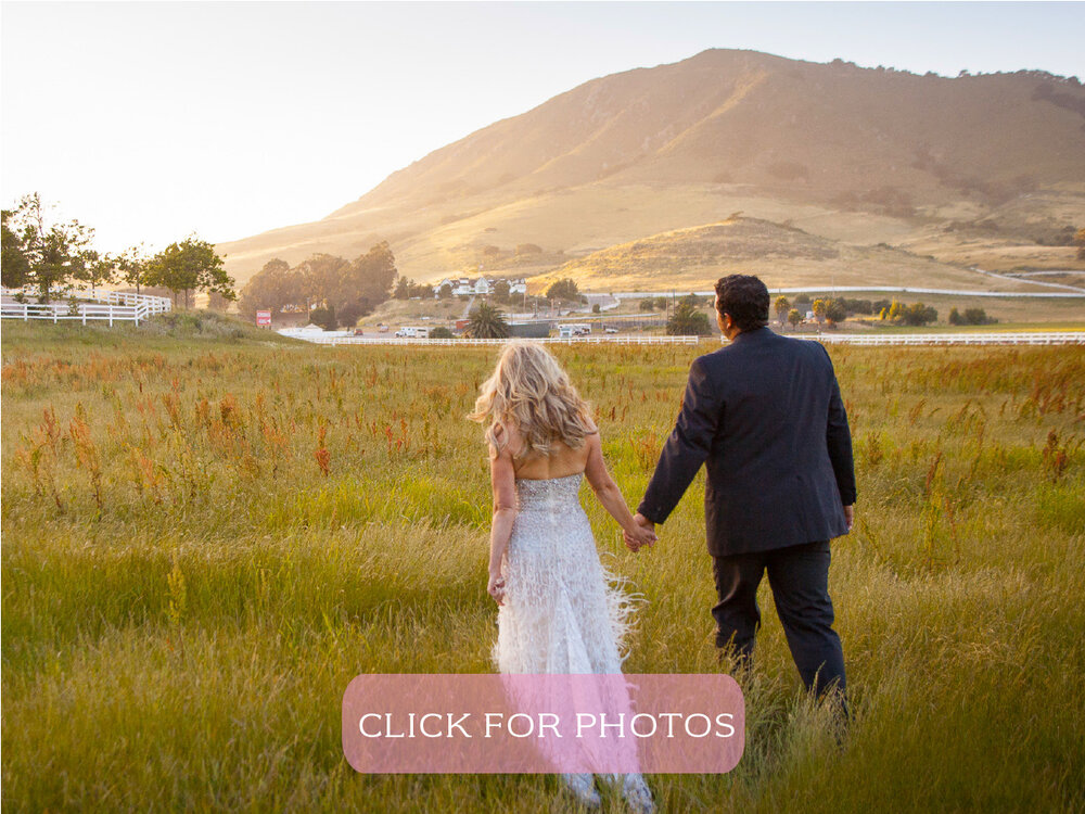 Madonna Meadows - Twenty-three sprawling acres of pristine grassy meadows makes an ideal setting for grand events, team building, and vendor shows. The scenic backdrop of Cerro San Luis Obispo Mountain aid lush pastures of Madonna Meadows offer incredible views, and spectacular photo.