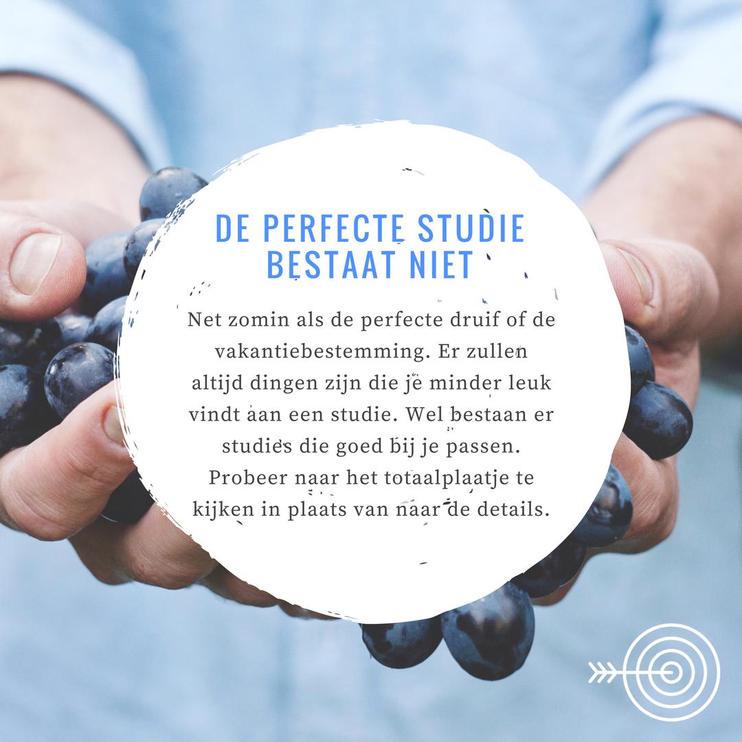 De perfecte studie bestaat niet.png