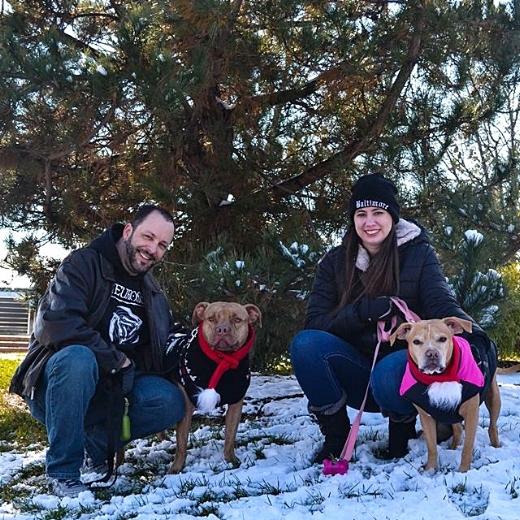 Family Portrait, Christmas 2017 Tim, Neno, Erin, Penny  Photos by Ashley