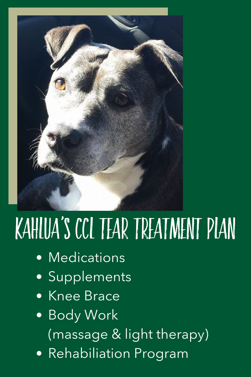 So I researched and created my own treatment plan. -