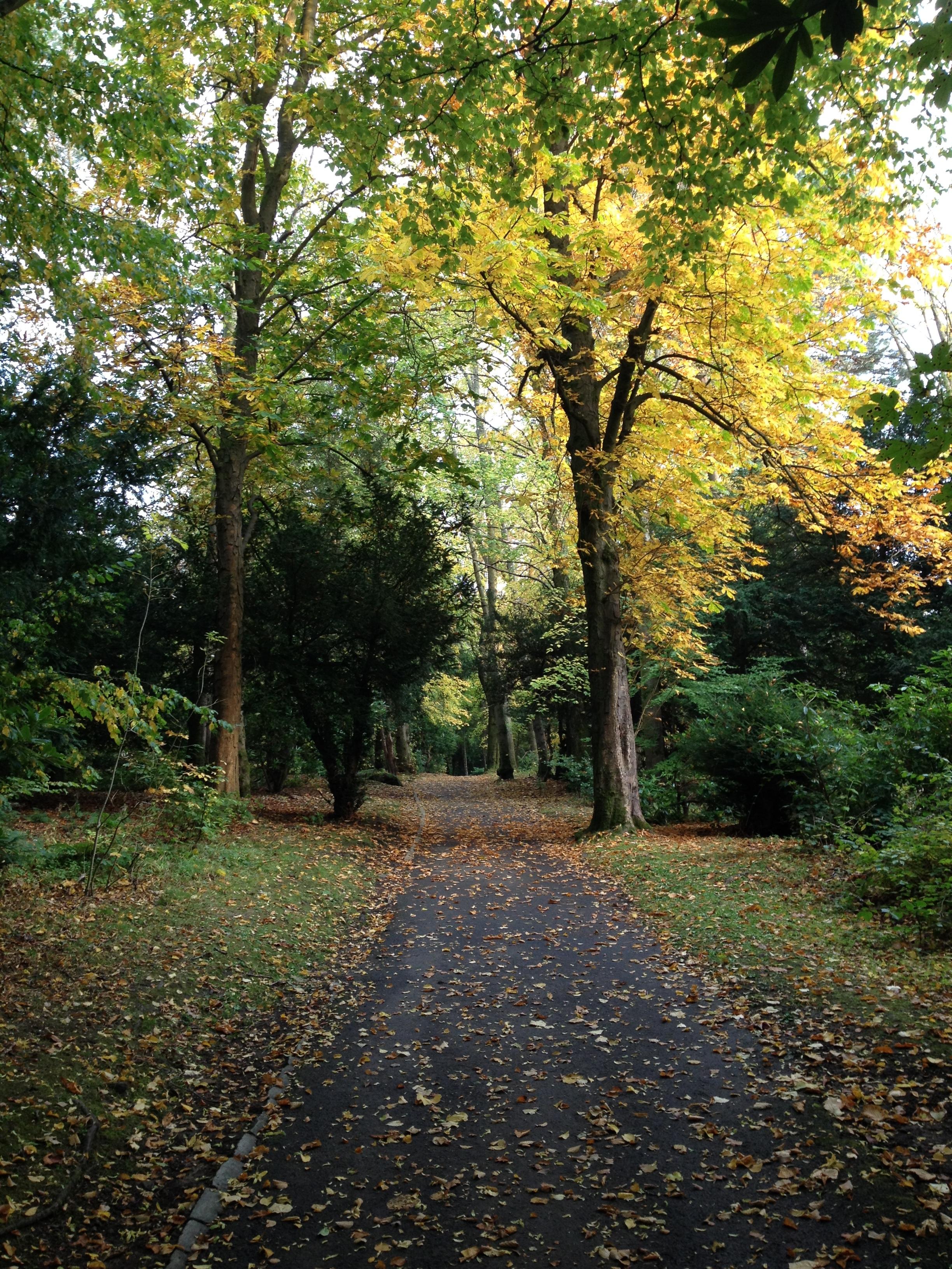 Pollark Park (Glasgow area)