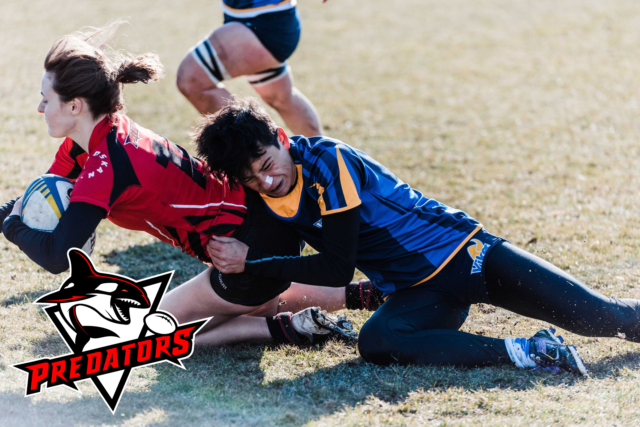 Predators Rugby - Our mission is to identify and develop young rugby athletes and provide them a strong foundation by prioritizing character, culture, and continuous improvement as they pursue their rugby ambitions.Learn More