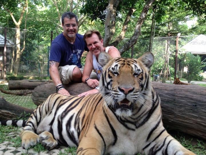 tiger with mark.jpg