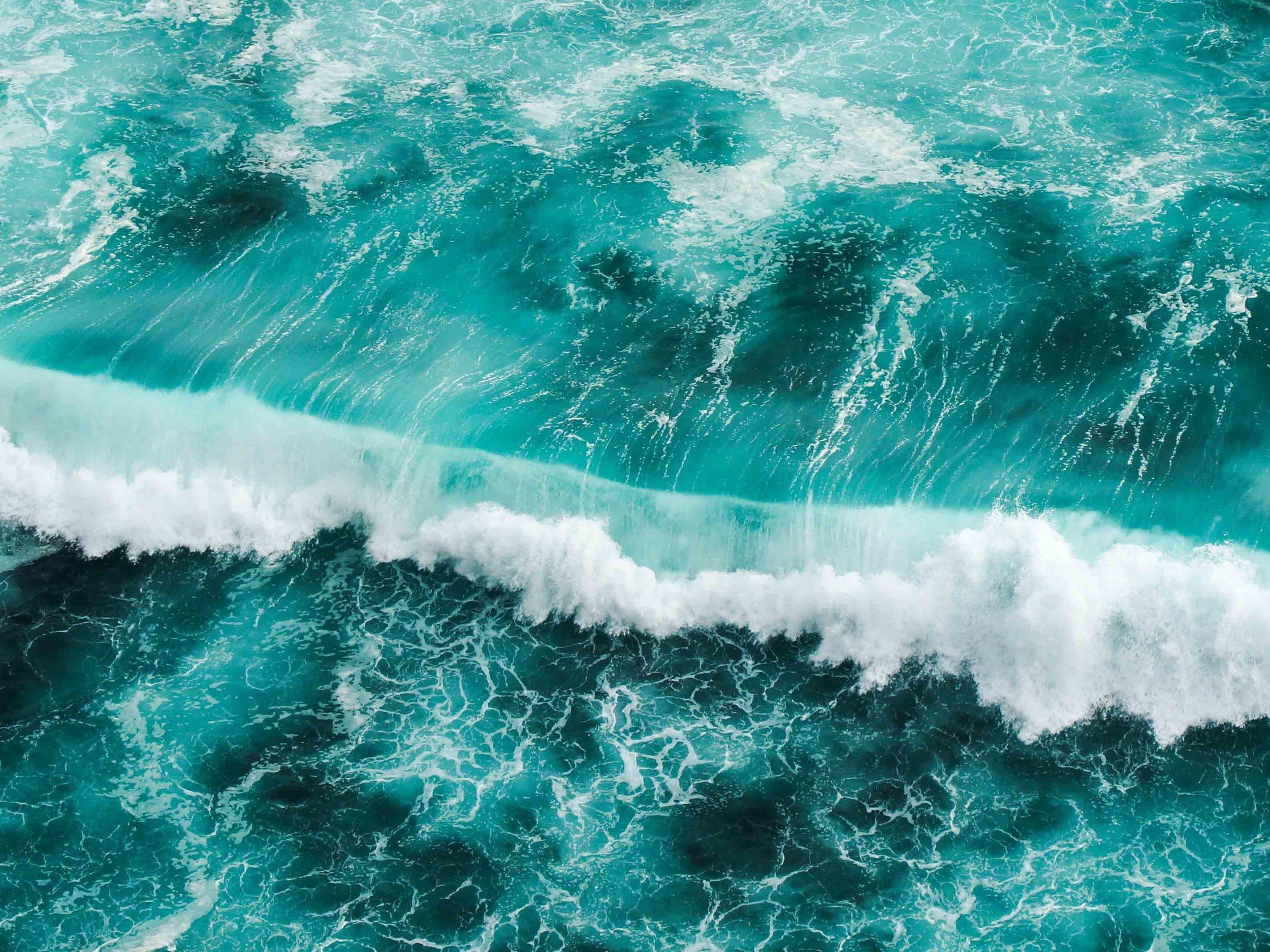 books-about-oceans-book-list-4-3.jpg