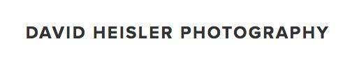 David Heisler_logo.jpg