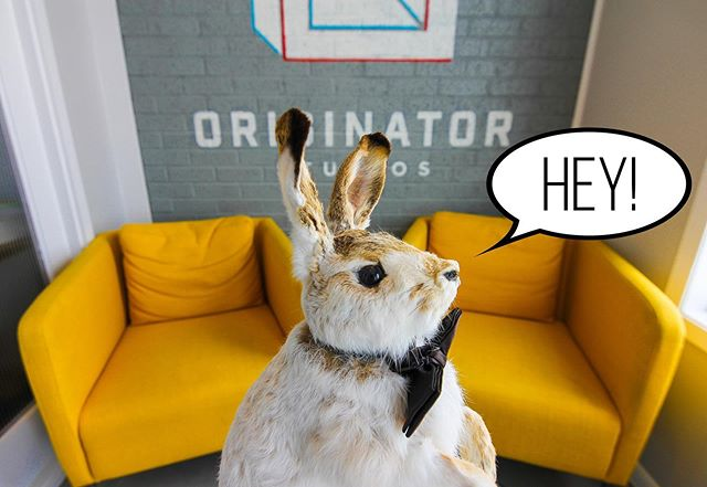 Wanna come hang out with Mr. Muffin every day? We've got two offices available for rent Sept. 1! DM for more details.