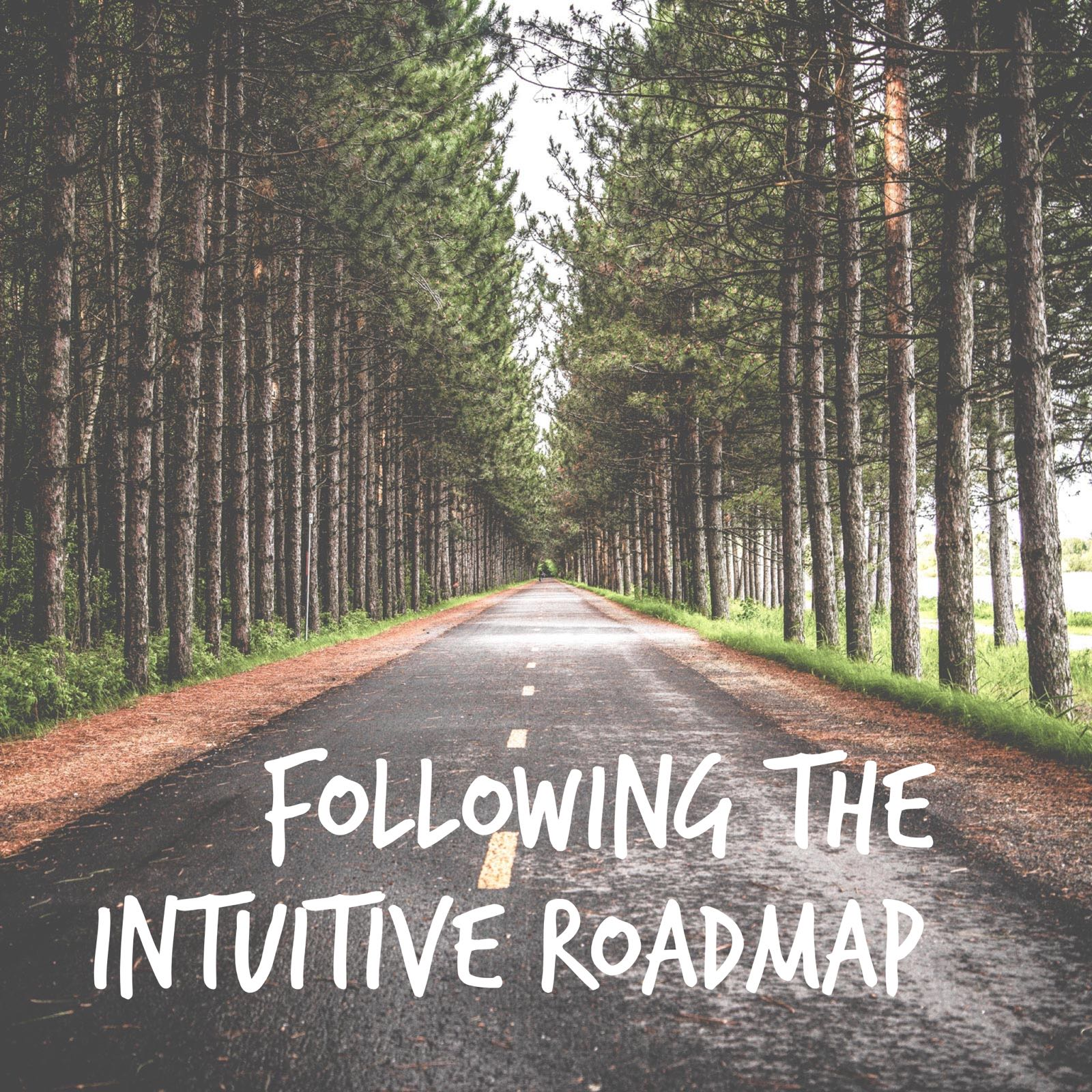 "Ever have that feeling of being in the right place at the right time? An unexpected opportunity come ""out of the blue""? Experience a synchronicity that you just can't explain? Welcome to the  Intuitive Roadmap . This undercurrent is always guiding you. Learn how to follow it."