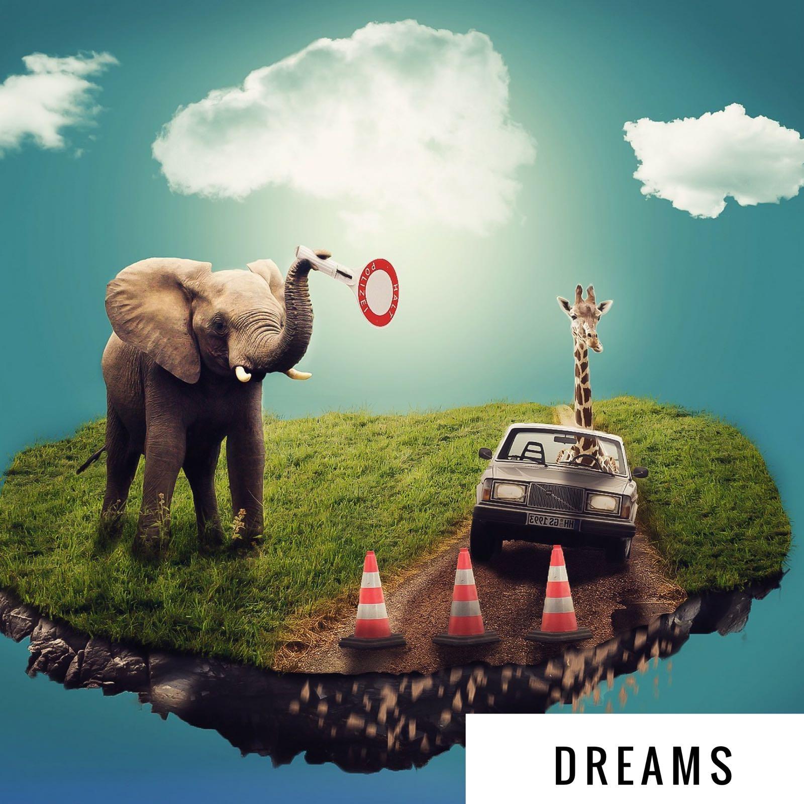 Dreams.jpeg