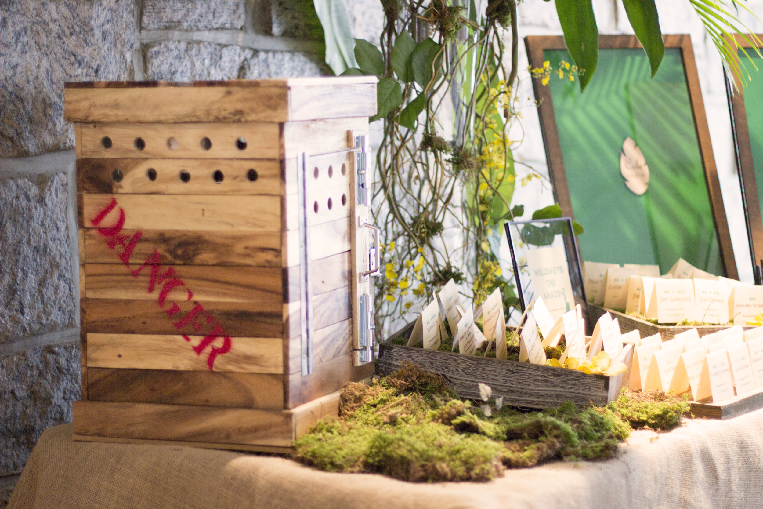 custom card box for jungle themed mitzvah
