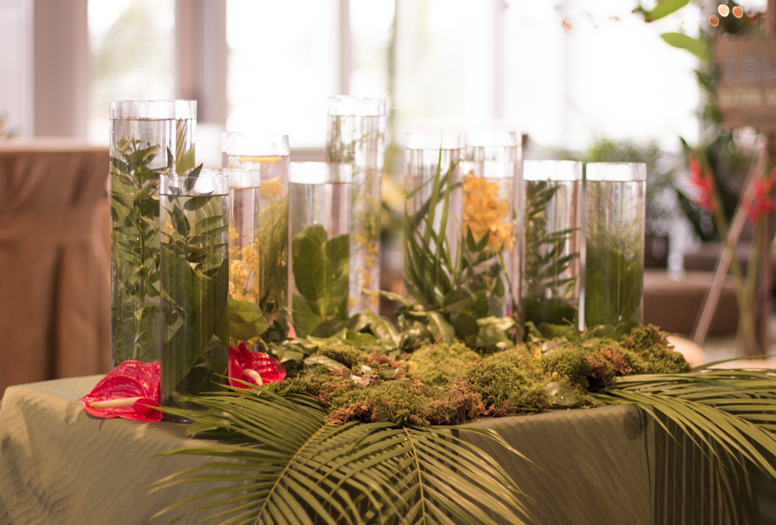 jungle themed candle lighting for amazon jungle themed mitzvah