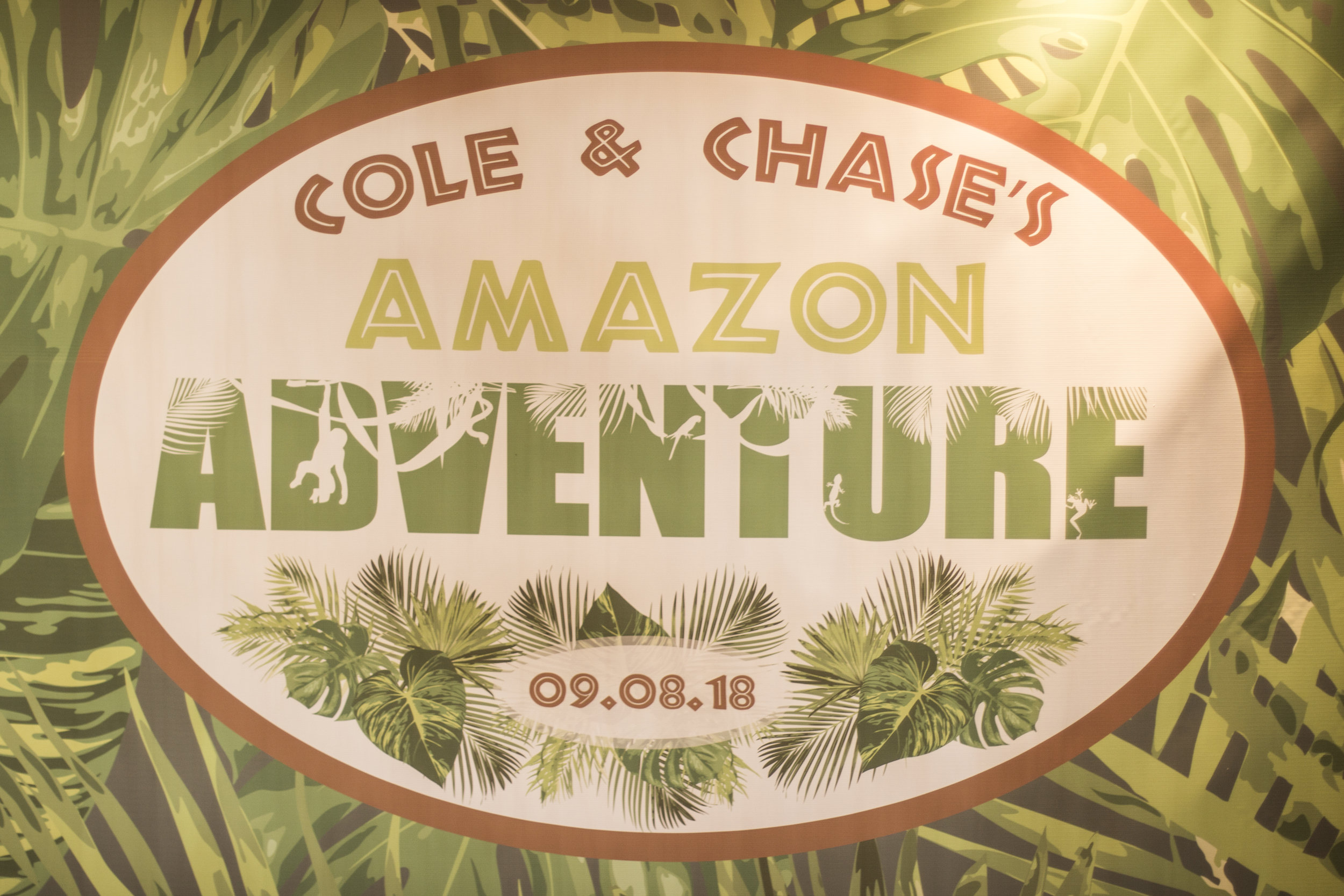 custom step and repeat by red carpet runway for amazon jungle themed mitzvah at channel club