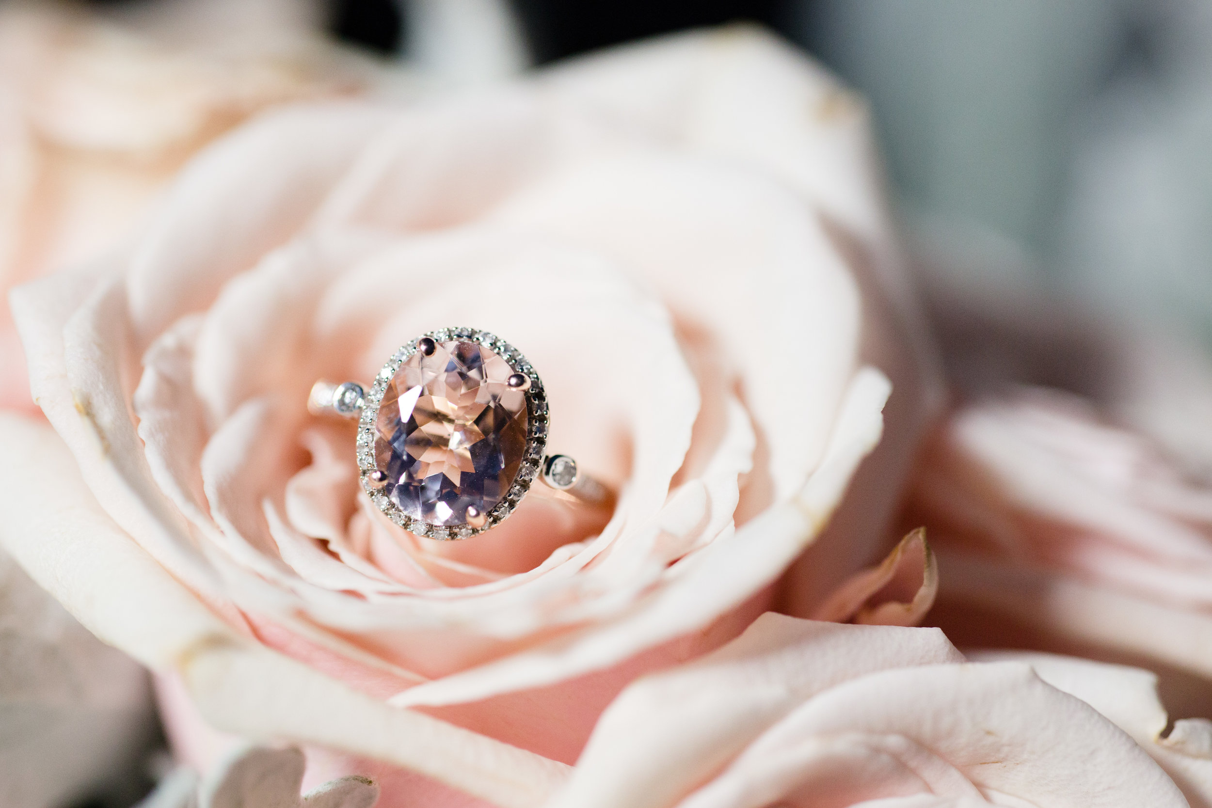 blush pink oval engagement ring with halo atop blush pink rose at beach engagement photo session