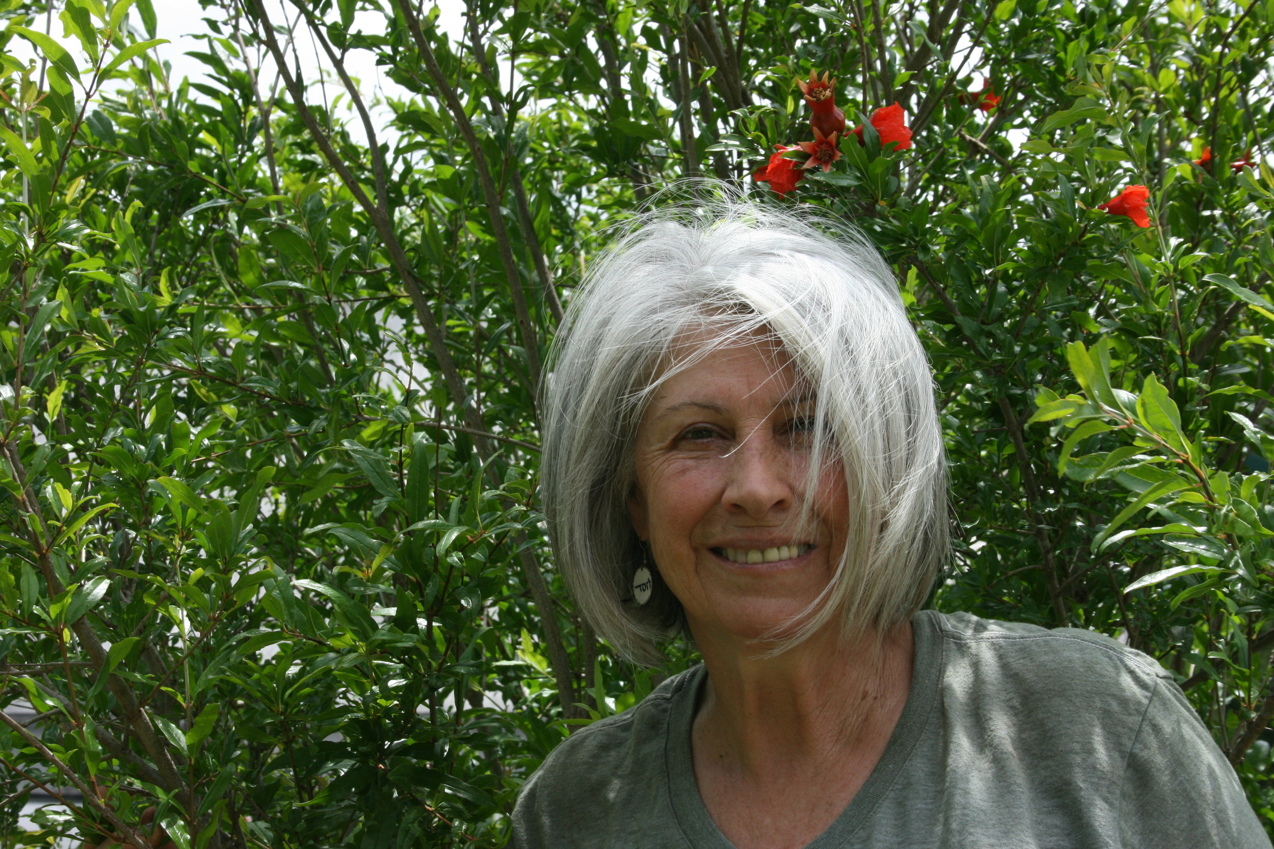 Karen Smith, native plant guru and owner of Southern Native Plantings at Longwood Plantation.