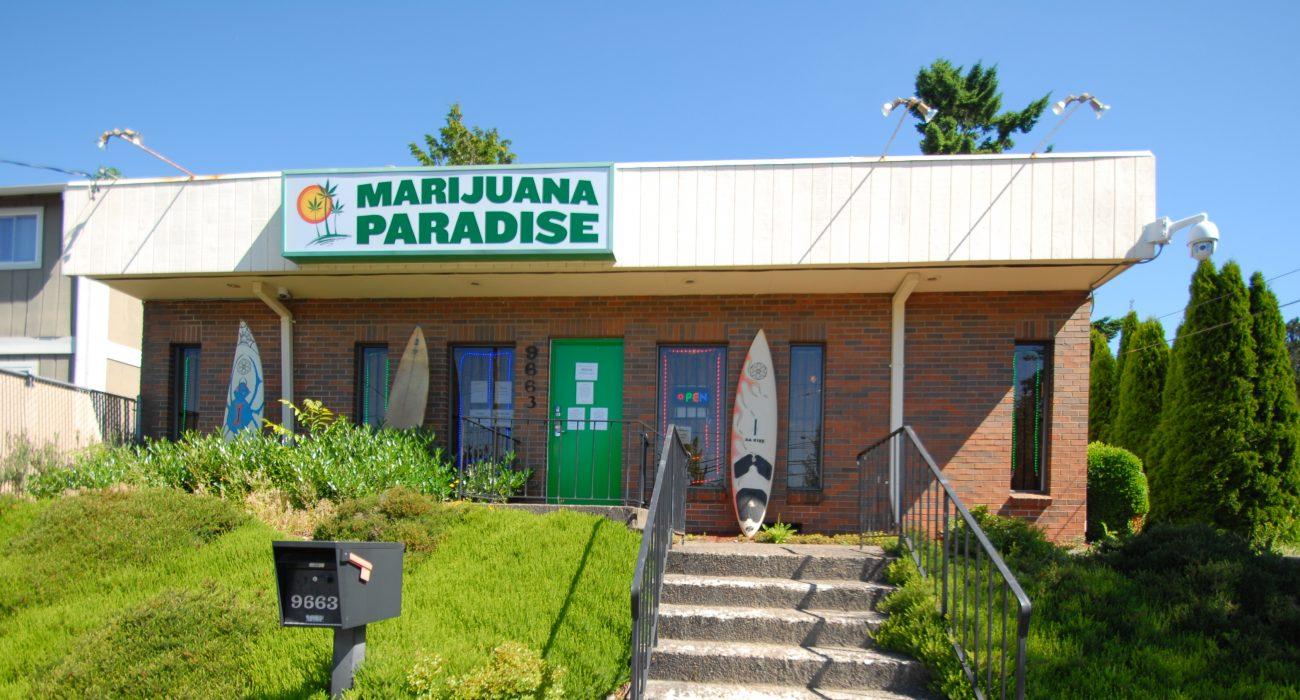 marijuanaparadise.jpg