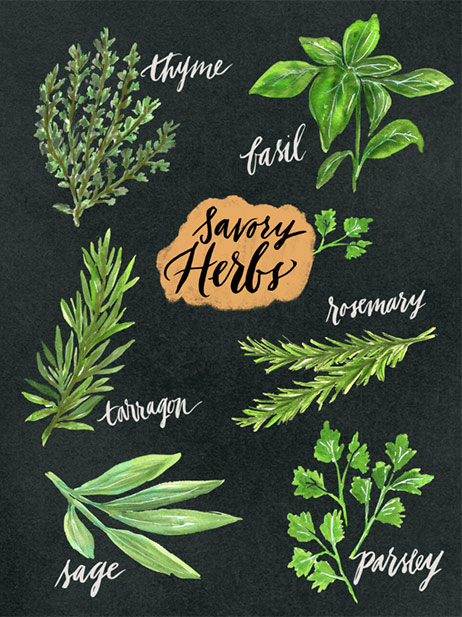 Savory Herbs