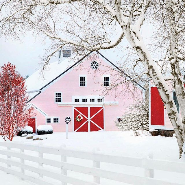 I'm embracing this wild weather with some design inspo! • Funny little fact... when Jeff + I recently purchased our #DreamHouse, we had no idea there was an adorable little barn on the property! It was a fun surprise and gives me the opportunity to decorate something completely out of the norm for me! I hope Jeff doesn't mind a pink barn because it's totally PERFECT for this city girl who is embracing the country life! 📷  @countrylivingmag • • • • • • • #foreverstunning #desareemarie #countrystyle #rusticstyle #pinkbarn #barndesign #homedecor #homestyle #dreamhome #homesweethome #homegoods #homedesign #homeinspiration #barnwedding #barnwood #snowfordays
