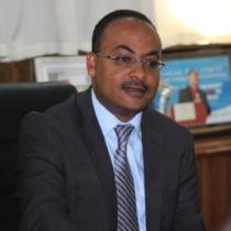 Kesetebirhan (Kesete) Admasu   CEO of Roll Back Malaria Partnership